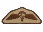 Parachute Regiment Qualification Wings Subdued Sand Military Badge
